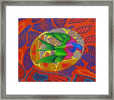 Swallow Tailed Kite Framed Print by Jane Tattersfield