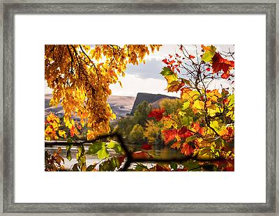 Swallow's Nest In The Fall Framed Print