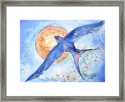 Swallows Return  Framed Print by Trudi Doyle