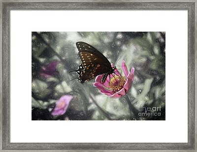 Swallowtail In A Fairytale Framed Print