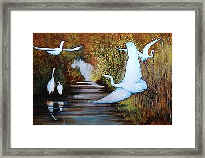 Swamp 1 Framed Print