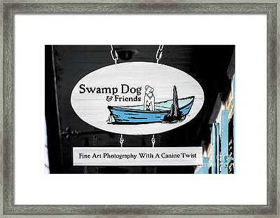 Swamp Dog And Friends Framed Print