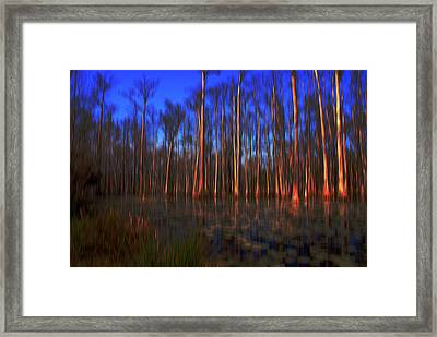 Swamp In Cypress Gardens Framed Print