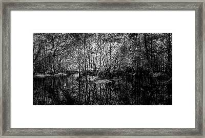 Swamp Island Framed Print by Marvin Spates