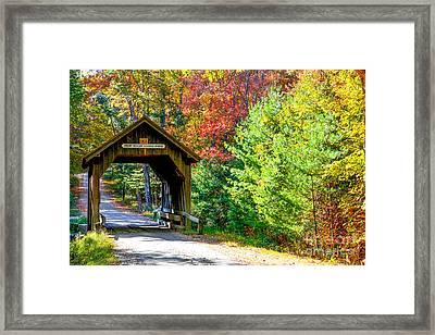 Swamp Meadow Bridge Framed Print by Lisa Kilby