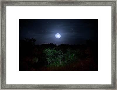 Swamp Moon Framed Print