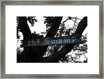 Swamp Oak Framed Print by The Stone Age