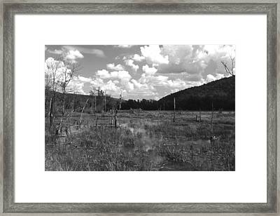 Framed Print featuring the photograph swamp1-OEM by Curtis J Neeley Jr