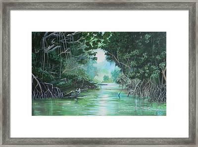 Swampland Framed Print