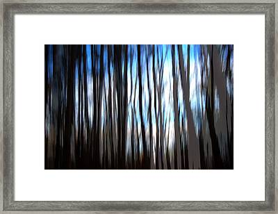 Swampland  Framed Print by Terence Morrissey