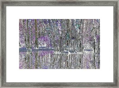 Swampscape Framed Print