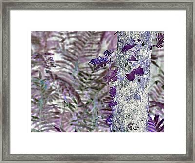 Ferns Of A Different Color Framed Print