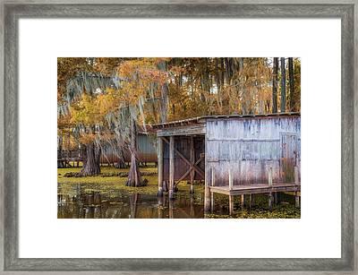 Swampy Dock  Framed Print