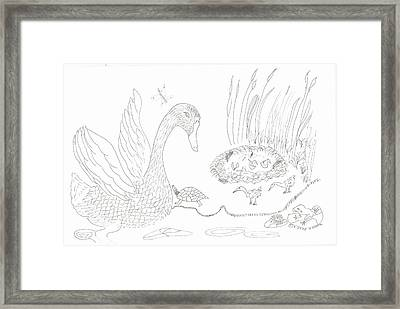 Swan And Hatchlings Framed Print
