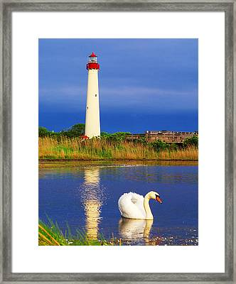 Swan At The Lighthouse Framed Print by Nick Zelinsky