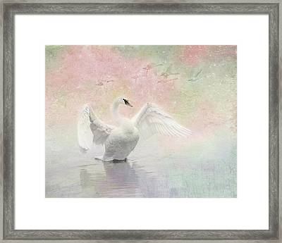 Swan Dream - Display Spring Pastel Colors Framed Print