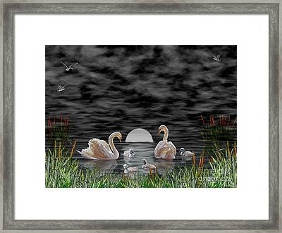 Framed Print featuring the digital art Swan Family by Terri Mills
