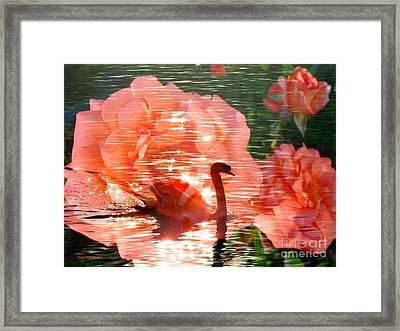 Swan In Lake With Orange Flowers Framed Print