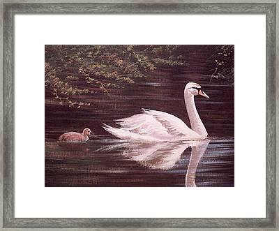 Swan Lake Framed Print by Cathal O malley