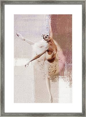 Swan Lake Dance  Framed Print by Gull G