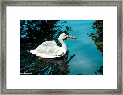 Swan Lake Framed Print by Debbie Karnes