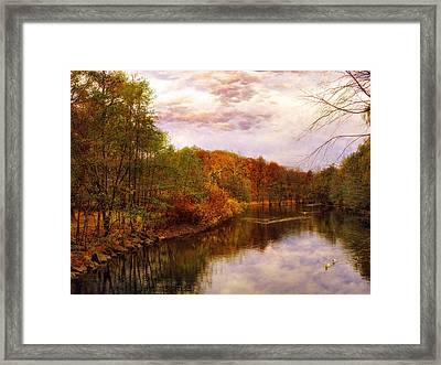 Swan Lake Framed Print by Jessica Jenney