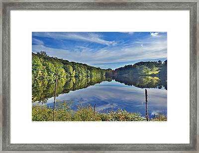 Swan Lake Times Two Framed Print
