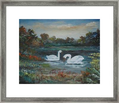 Swan Framed Print by M Bhatt