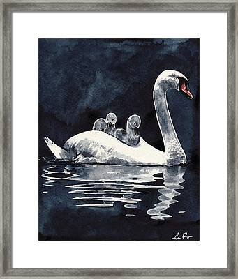 Swan Mother And Babies On The Lake Framed Print by Laura Row