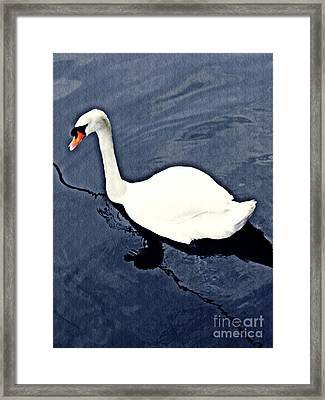 Framed Print featuring the photograph Swan On The Rhine by Sarah Loft