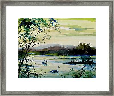 Swan Pond Framed Print by Art Scholz