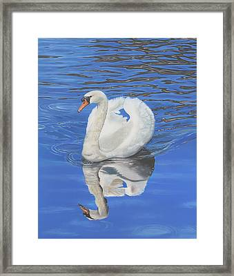 Framed Print featuring the painting Swan Reflection by Elizabeth Lock