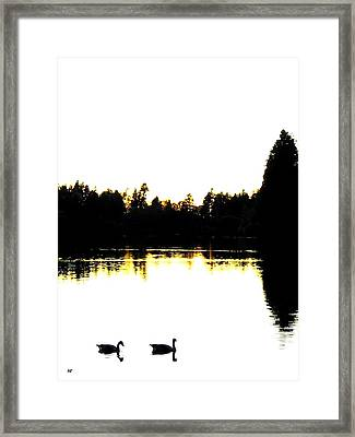Swan Silhouette Framed Print by Will Borden
