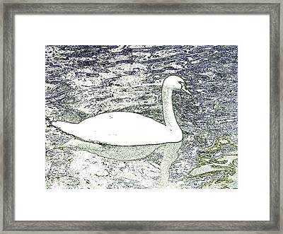 Framed Print featuring the photograph Swan Sketch by Manuela Constantin