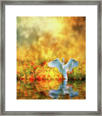 Framed Print featuring the photograph Swan Song At Sunset Thanks For The Good Day Lord by Diane Schuster