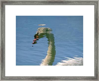 Swanreflection Framed Print