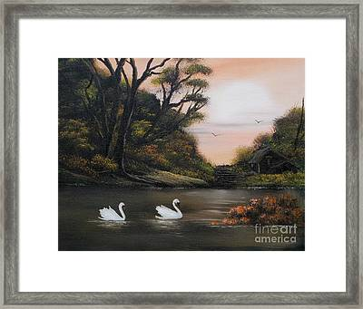 Swans At Dusk.for Sale Framed Print by Cynthia Adams