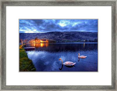Swans At Gougane Barra Framed Print