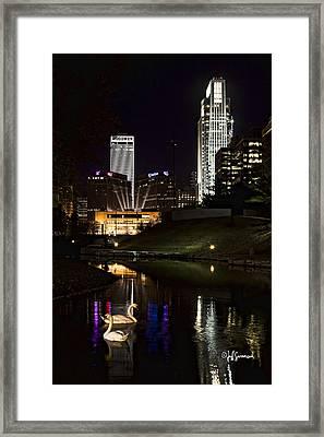 Swans At Night Framed Print