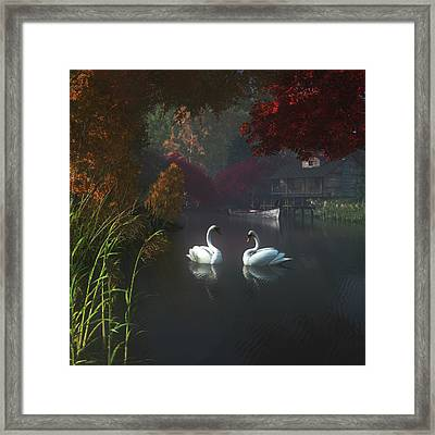 Swans In A River Near Home Framed Print by Jan Keteleer