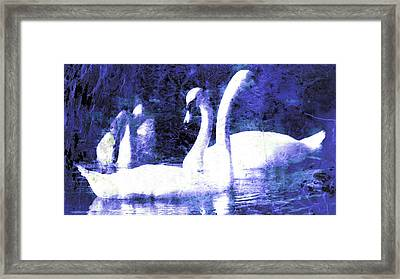 Framed Print featuring the digital art Swans On Water  by Fine Art By Andrew David