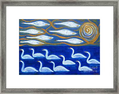 Swans Framed Print by Patrick J Murphy