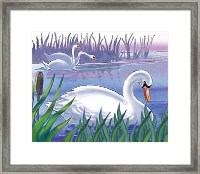 Swans Framed Print by Valer Ian