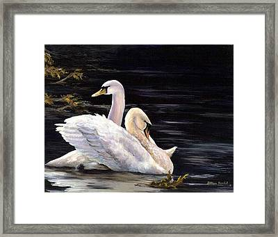 Swansong Framed Print by Kathleen Marshall McConnell