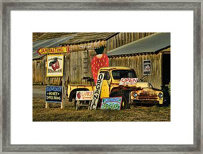 Swanton Berry Farm / International Pickup Framed Print