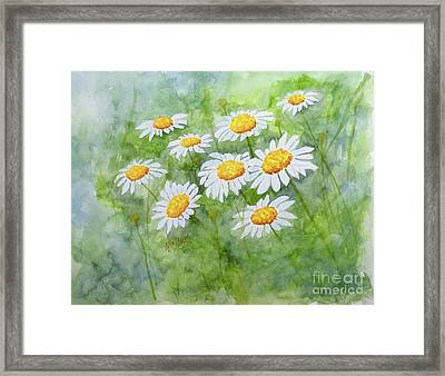 Swaying Daisies  Framed Print