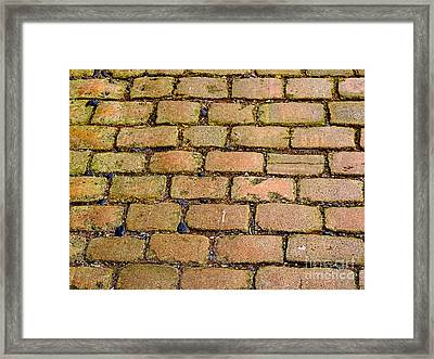 Sweating Cobs Framed Print by Stephen Brooks