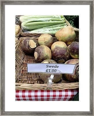 Swede Crop For Sale Framed Print