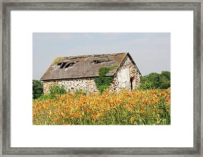 Swede Run Barn  Framed Print by Jan Daniels