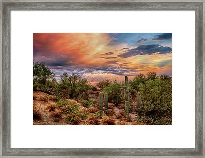 Sweeping In Framed Print